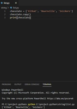 python list copy method