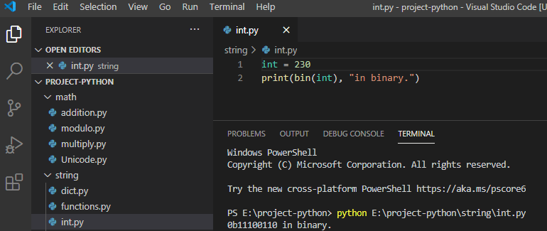 Python convert int to binary