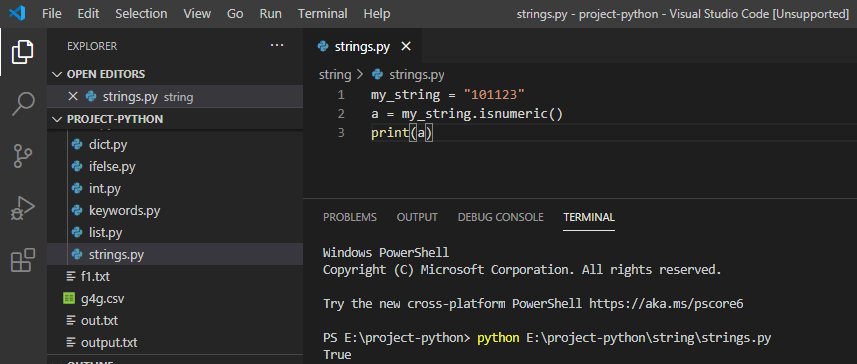 Check if a string is number python