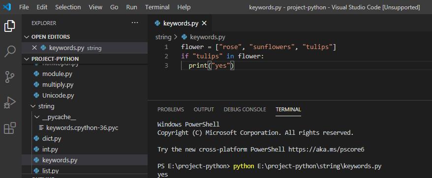 in keyword in python