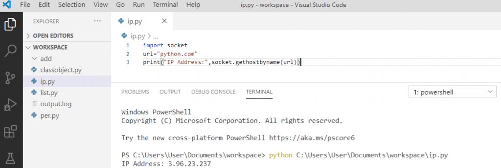 Python get an IP address from the URL