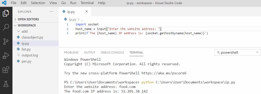 Python get the IP Address of a website using a script