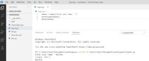 Python input() function