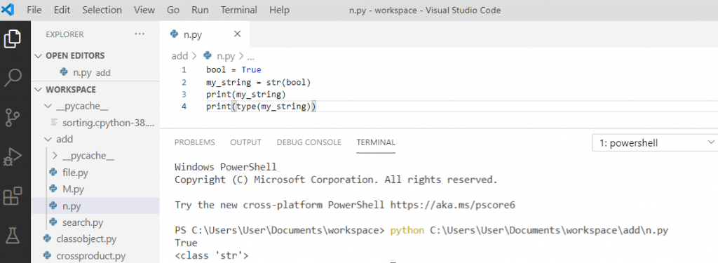 Python convert boolean to string