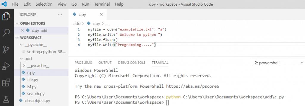 Python file flush() method
