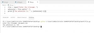 Python ask for user input