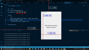 Python Tkinter Window Size
