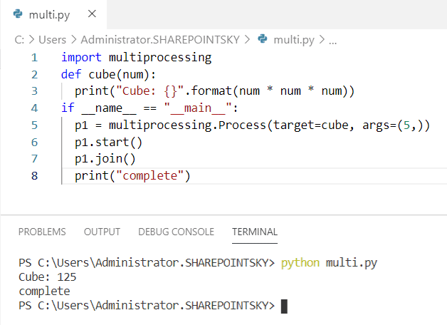 Multiprocessing example