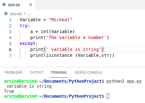 Python check if variable is number or string