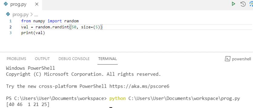 Python numpy random array