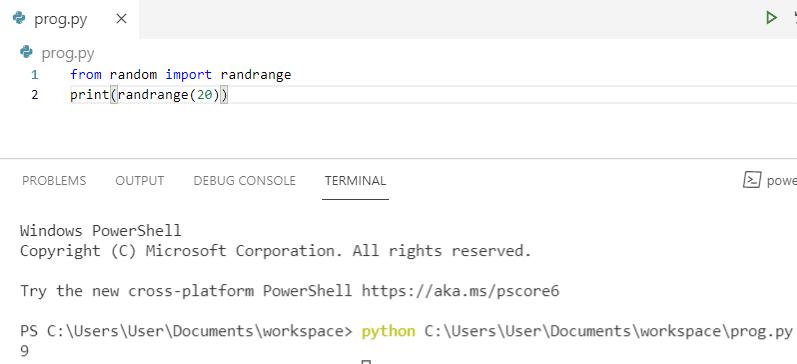 Python numpy random integer