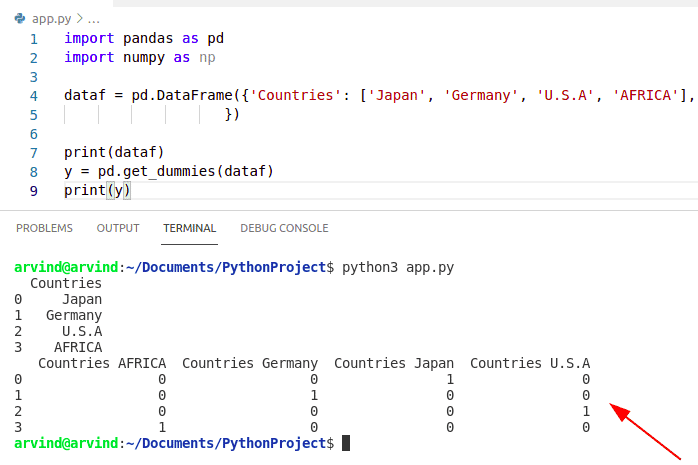 Create a dummy variable in Python