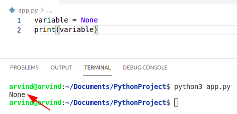 Create a empty variable in python