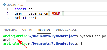 Create environment variable in python