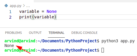 Python create a variable without value