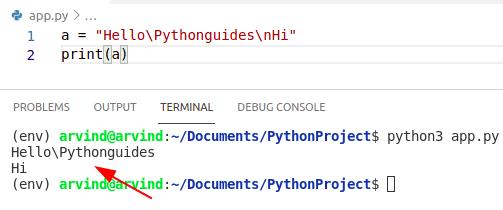 Python make a string variable raw