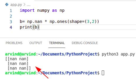Python numpy create nan array np.ones method