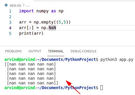 Python numpy create nan array