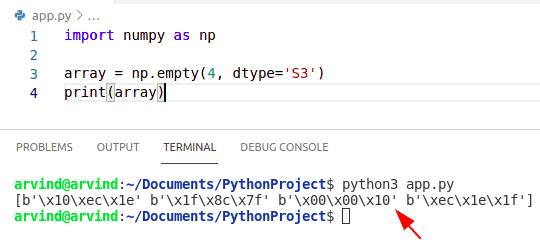 Python numpy empty string array