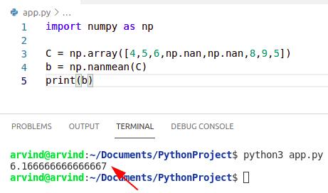 Python numpy nan average