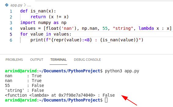 Python numpy nan isnan method