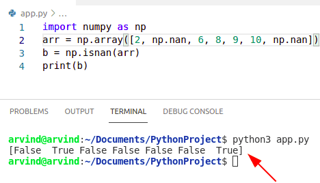 Python numpy nan