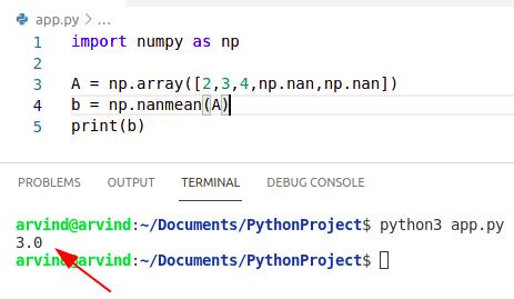 Python numpy nanmean