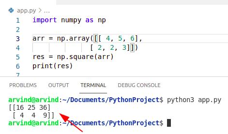 Python numpy square array