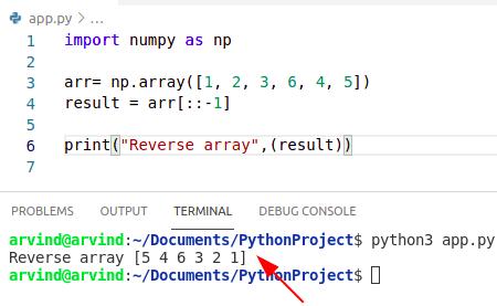 Python reverse numpy array