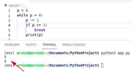 Python while loop break condition