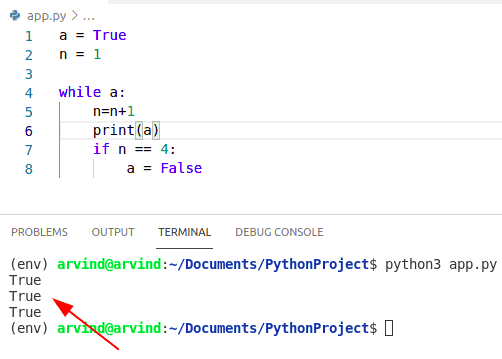 Python while loop boolean condition
