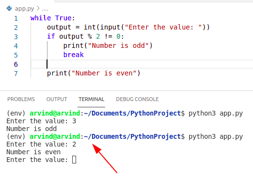 Python while true loop continue